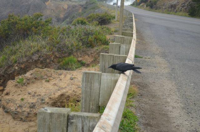 Crow Beach